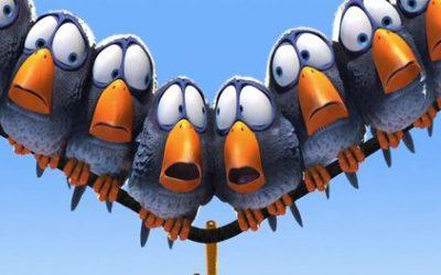 Des oiseaux drôles et cruels