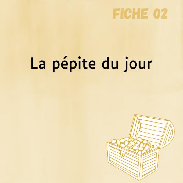 Fiche-pédagogique-Comitys-La-pepite-du-jour